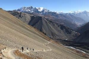 Day 10: Trek from Manang to Yak Kharka (4,110m)