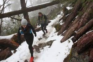 Day 3: Trek to Sing Gompa (3330m)