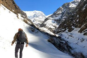 Day 8: Machhapuchre Base Camp to Dovan
